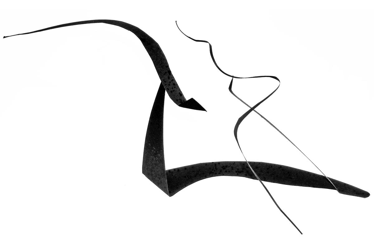 7 pas de deux-marco-balzarro