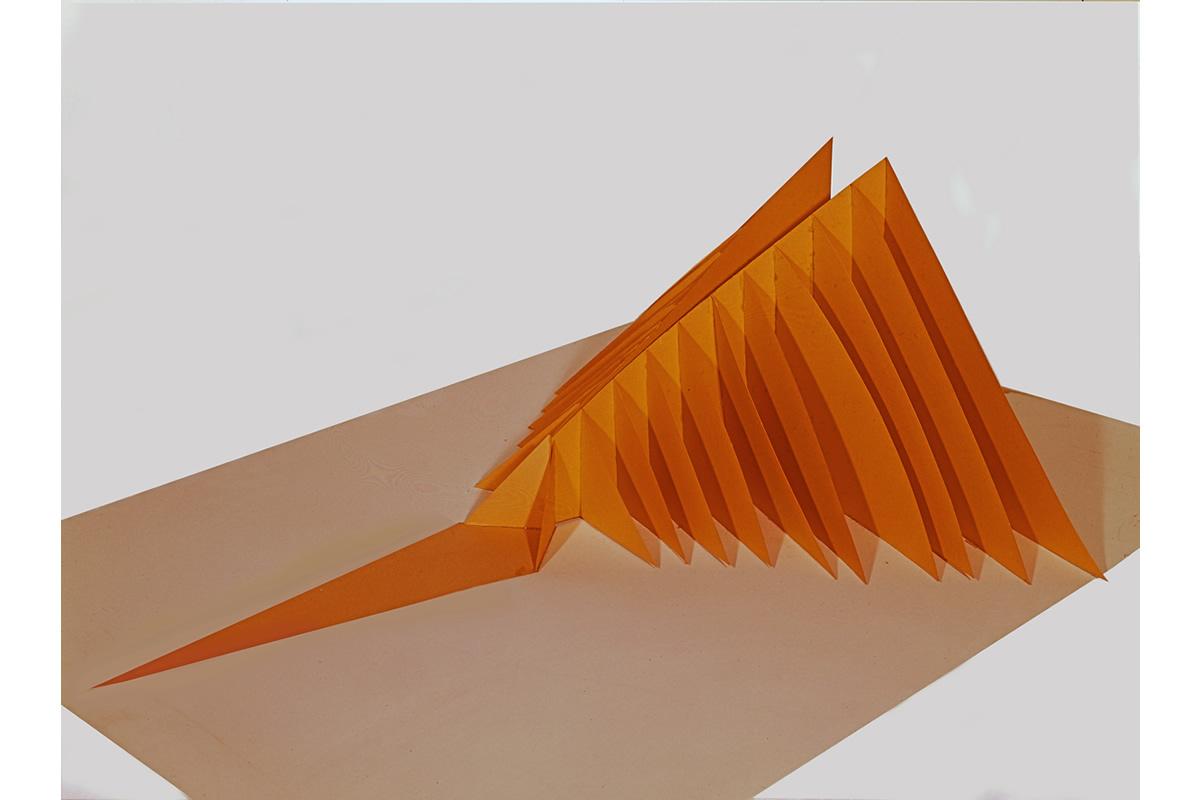 12-the angel of carrots-marco-balzarro