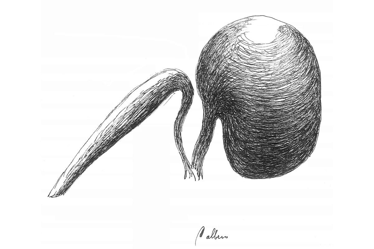 18 tree-marco-balzarro