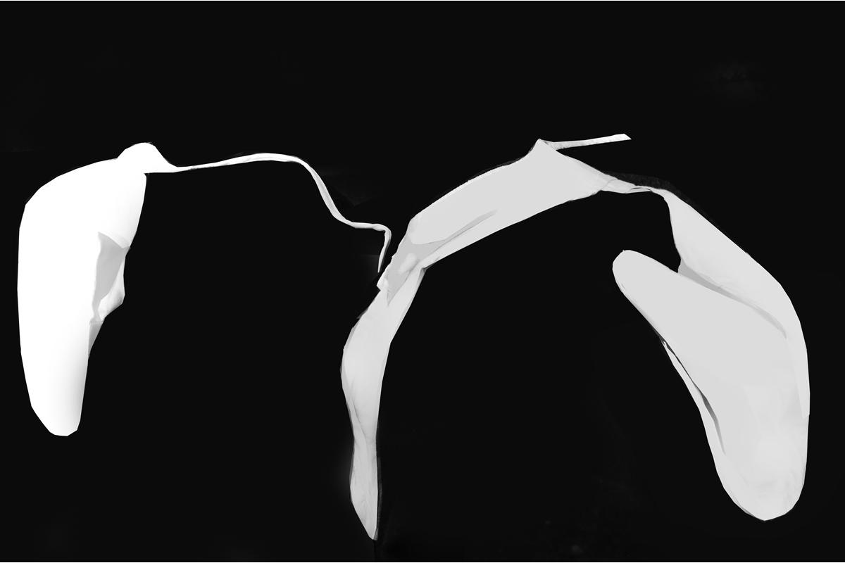 71 white tree second-marco-balzarro